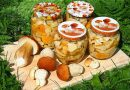 Маринованные белые грибы на зиму в банках — простые рецепты приготовления